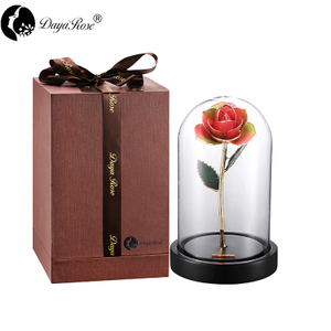 Wholesale Processing Customized Diana Rainbow Golden Rose (The Glass Cover)
