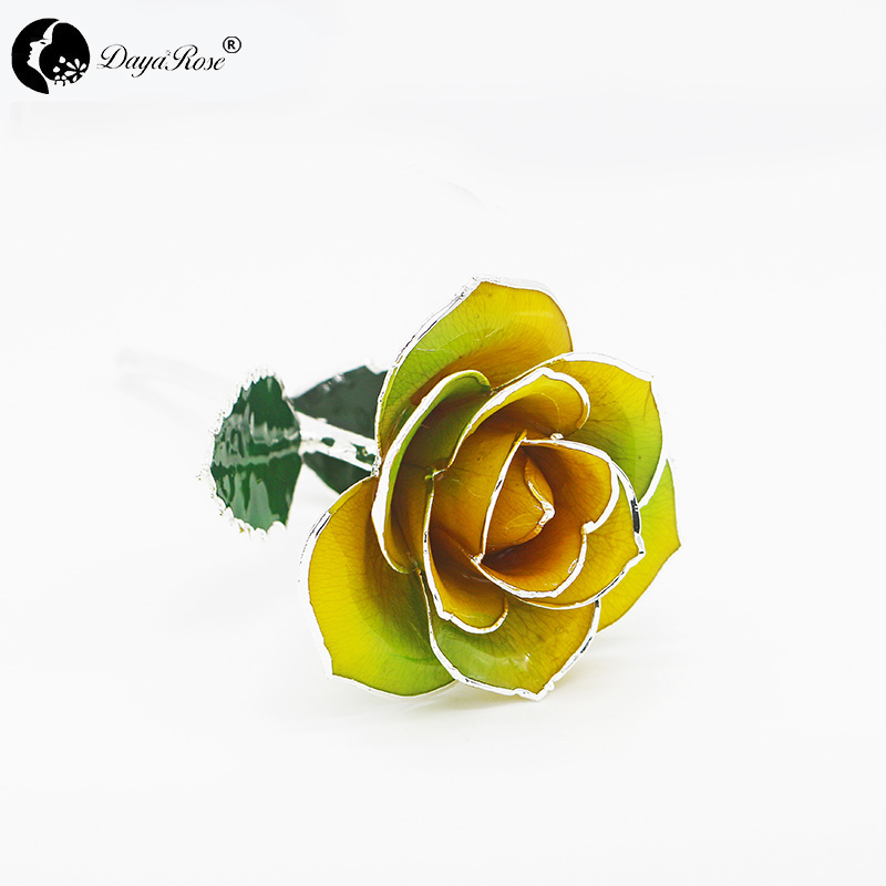Two-tone Silver Rose (February)